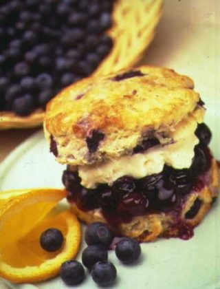 Double Blueberry Shortcakes