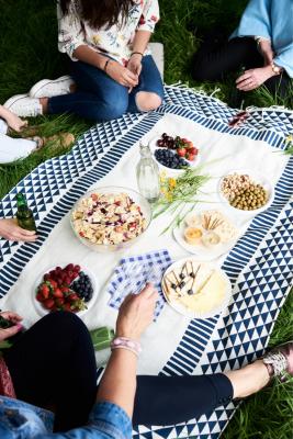 Blueberry picnic
