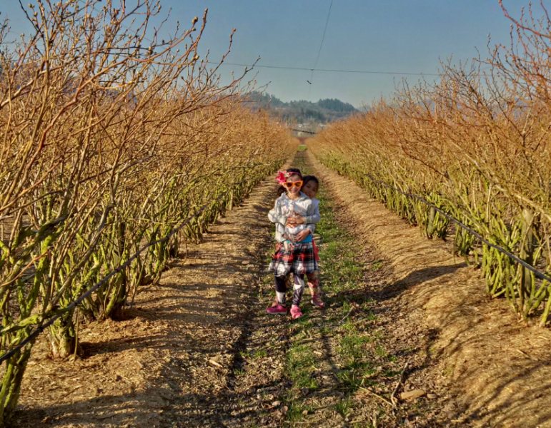 After the Fraser Farm is mulched, his daughters play in the fields
